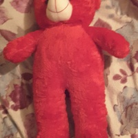 Red teddy