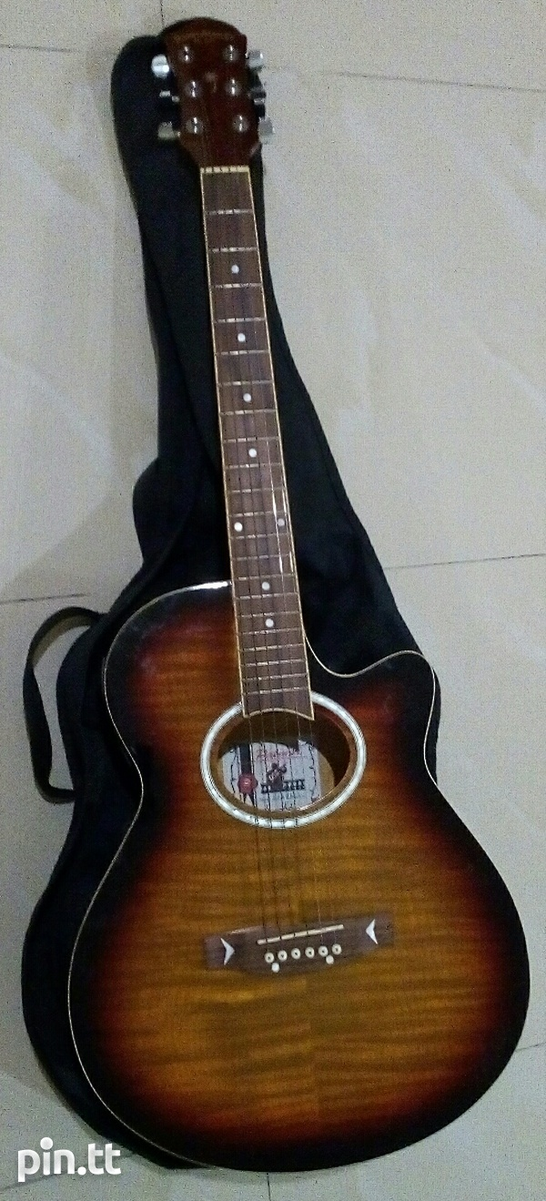 Palmer Acoustic Electric Guitar