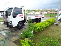 Transport for hire with Isuzu 3 ton truck and 1-1/4Ton Pickup.