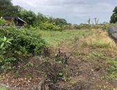 Cunupia off Welcome Road 6,000 sq ft flat land