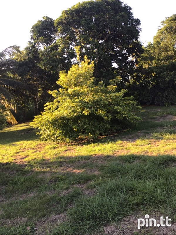 2 lots Renn Avenue La Romain just off Palmiste Boulevard .-5
