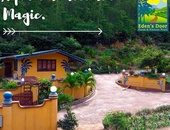 Live in peace and serenity Tobago's only nature park community