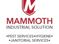Mammoth Industrial Solutions