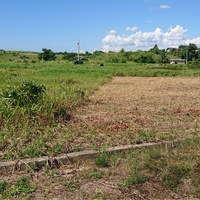 Parcel Of Land Located In Woodland