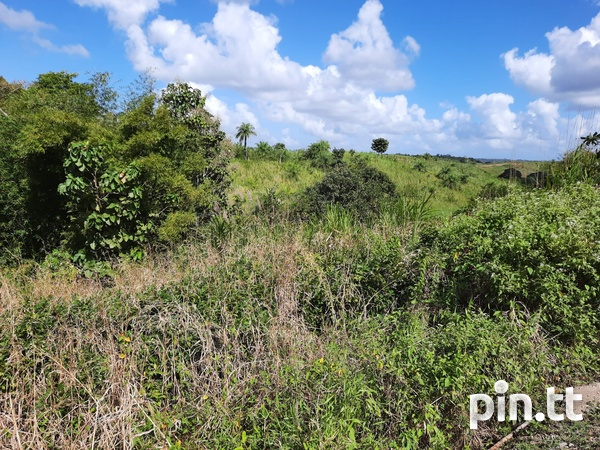 Land in Princes Town-5