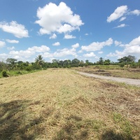 TODDS ROAD FREEPORT LAND