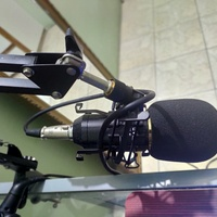 Neewer NW 800 Professional Condenser Mic