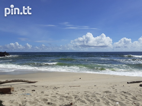 Toco- 326 Acres Freehold Land