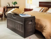 Storage Chest - Patio Furniture or Bedroom