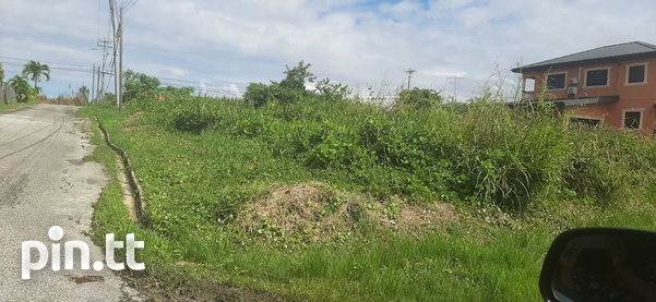 Beautiful 10,000sq.feet residential land-4