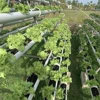 Coco peat pipe system
