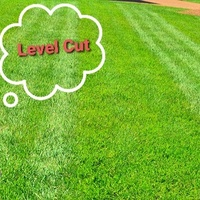 LAWN & LAND MAINTENANCE - KEEPING IT LEVEL - JUST THE WAY YOU LIKE IT