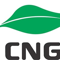 Cng Service And Repairs