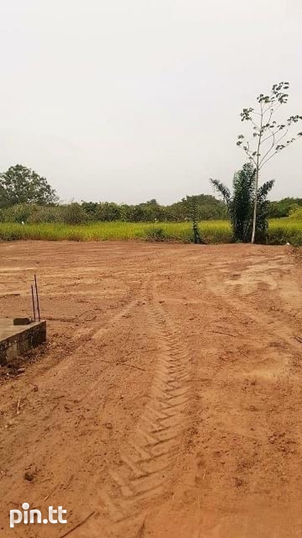 Large Parcel Of Land Cunupia-3