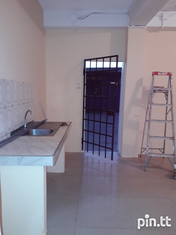 Newly renovated 1 bedroom apartment-7