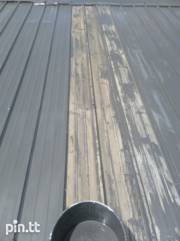 Roof painting-6