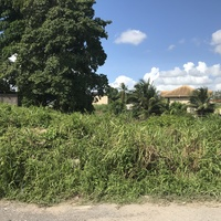 Chin Chin - Commercial Land 10,000sf