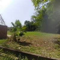 Manzanilla Land Negotiable