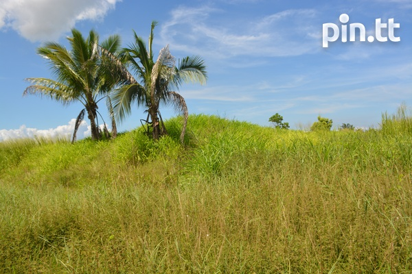 Couva Agricultural Land, 2 Acres-1