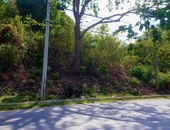 One Lot Located Blanchisseus Arima On The Main Road