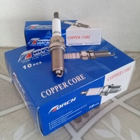 Torch Spark Plugs