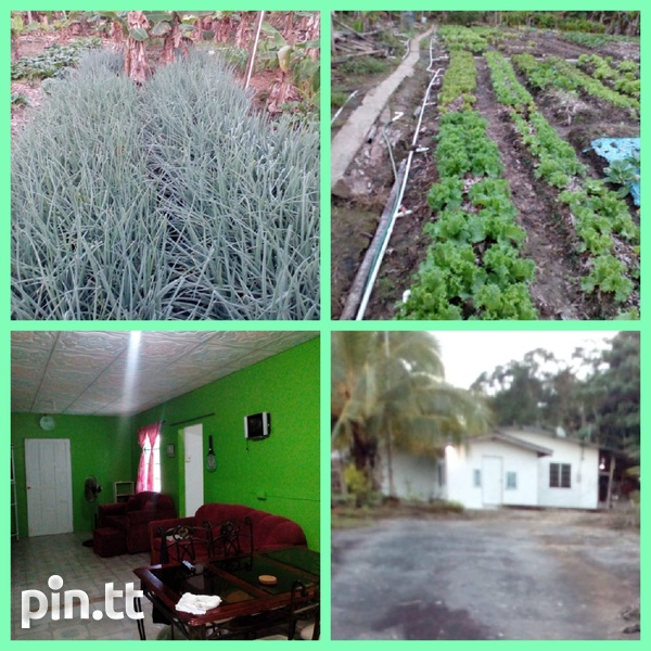 Mamoral 2 Bedroom House with 1.25 Acres-1