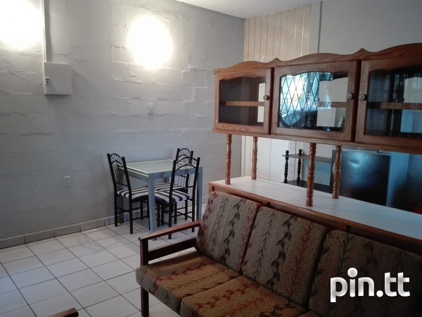 Furnished 1 Bedroom Apartment-5