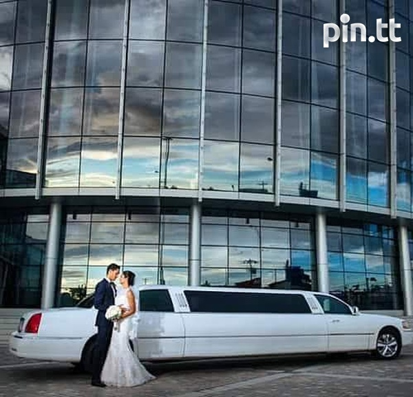 Limousine and Antique Cars 5 Hrs-5
