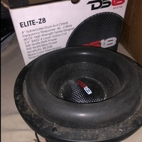DS-18 8inch Subwoofer