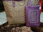 Coach 2019 Reversible Handbags And Pouches