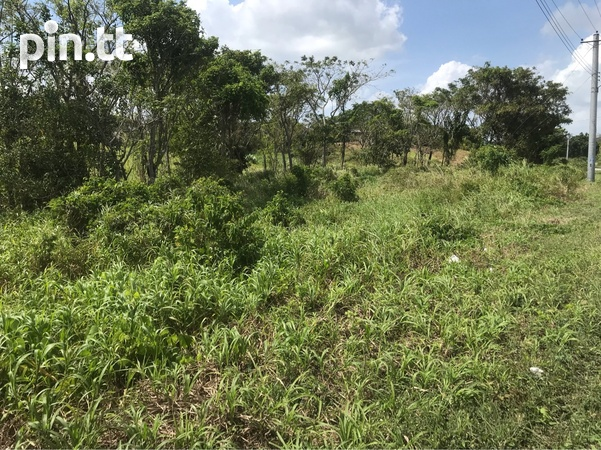 Over 2 Acres Agricultural Land-2