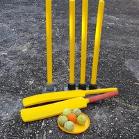 Cricket set- Bats, Balls, Wicket stumps for kids