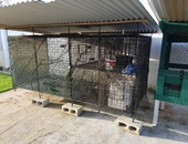 USED PARROT/BIRD CAGE