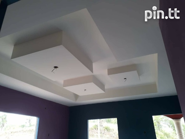 Professional Ceiling-2