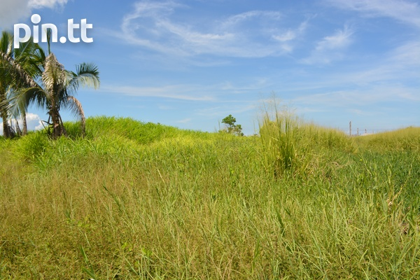 Couva Agricultural Land, 2 Acres-3