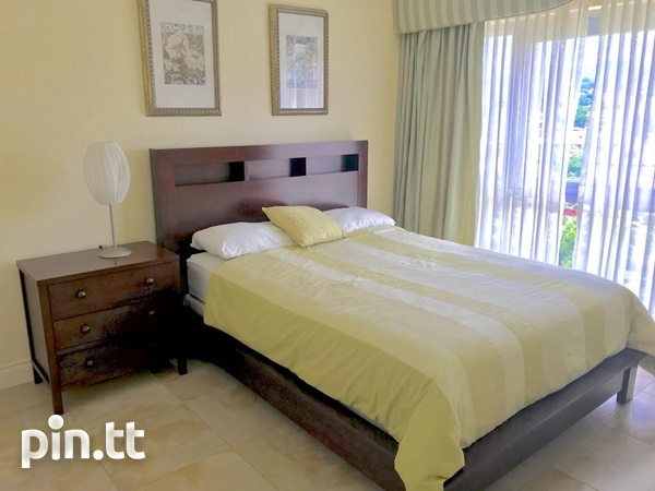 3 Bedroom Fully Furnished and Equipped Apt One Woodbrook Place.-5