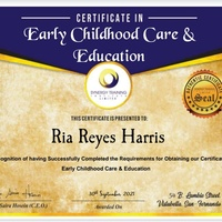 Certifcate in Early childhood care and education and special education