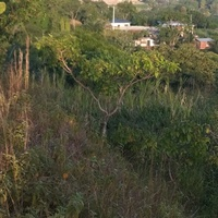 Land in Windsor Heights, Arima