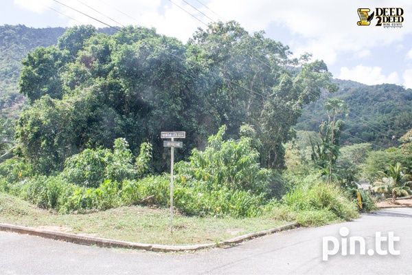 PRIME RESIDENTIAL LOT, MOUNTAIN VIEW, MARACAS VALLEY-3