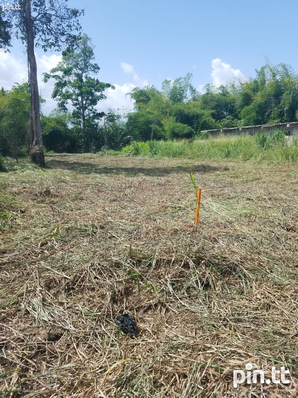 5600 SQF Land, Factory Road, Piarco-2