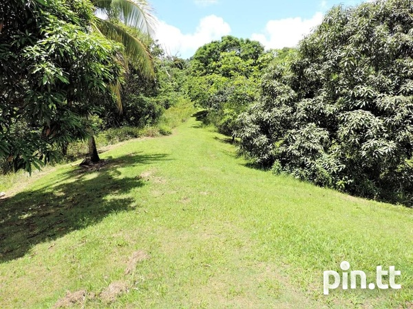 4 AND A HALF ACRES OF LAND CAPARO-4