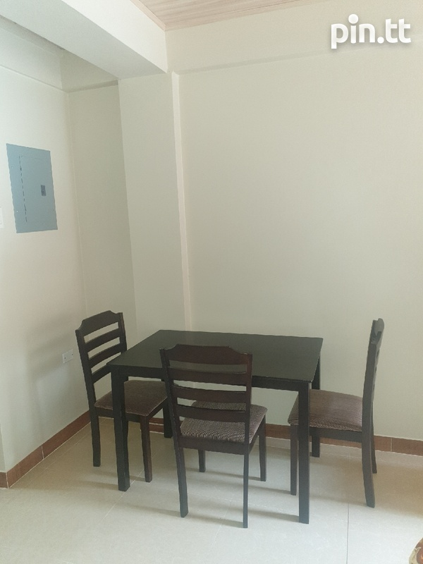 1 Bedroom Fully Furnished Belmont Apartment-2