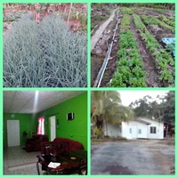 Mamoral 2 Bedroom House with 1.25 Acres