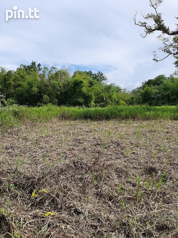 5 Acres Prime Residential Freehold Land in Sangre Grande.-3