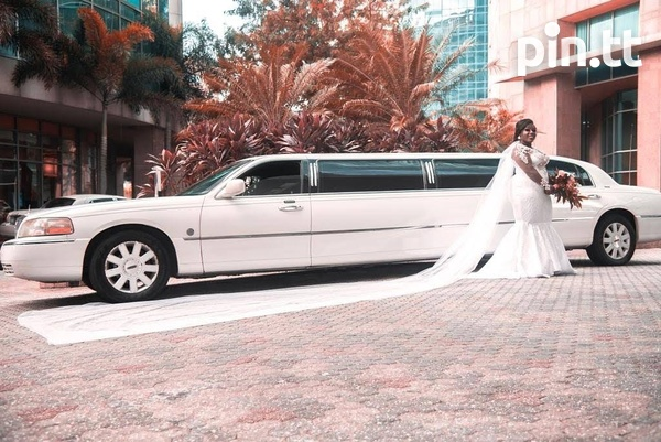 Limousine and Antique Cars 5 Hrs-6