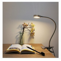 LED desk lamp...new