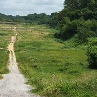 Mayaro land Available for an Investment beach house