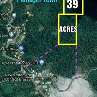 Flanigan Town 39 Acres Agricultural Land