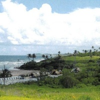Freehold Land 4 Acres GUAYAGUAYARE MAYARO