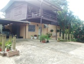 21 acres Talparo, 7 houses, fully cultivated